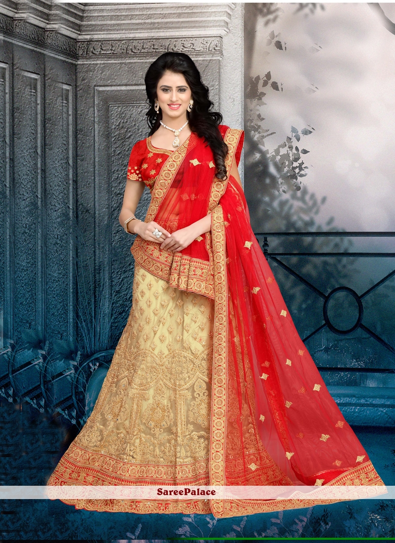 d9794a0f48 Buy Flawless Net Beige and Red Patch Border Work Lehenga Choli Online