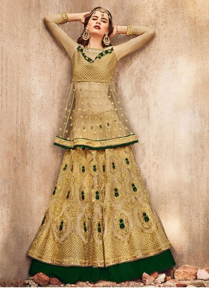 Gold Embroidered Net Trendy Lehenga Choli